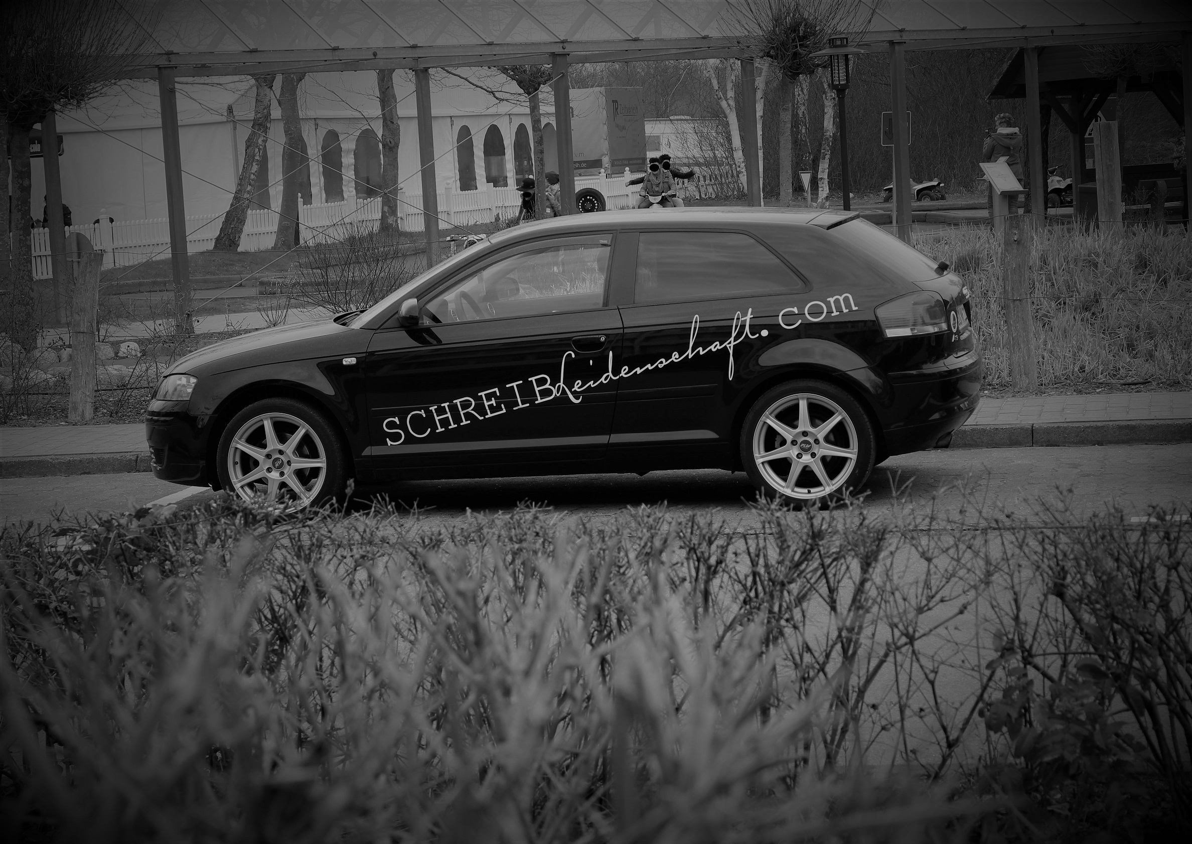 Geburt & Wachstum - Audi-L-Beach